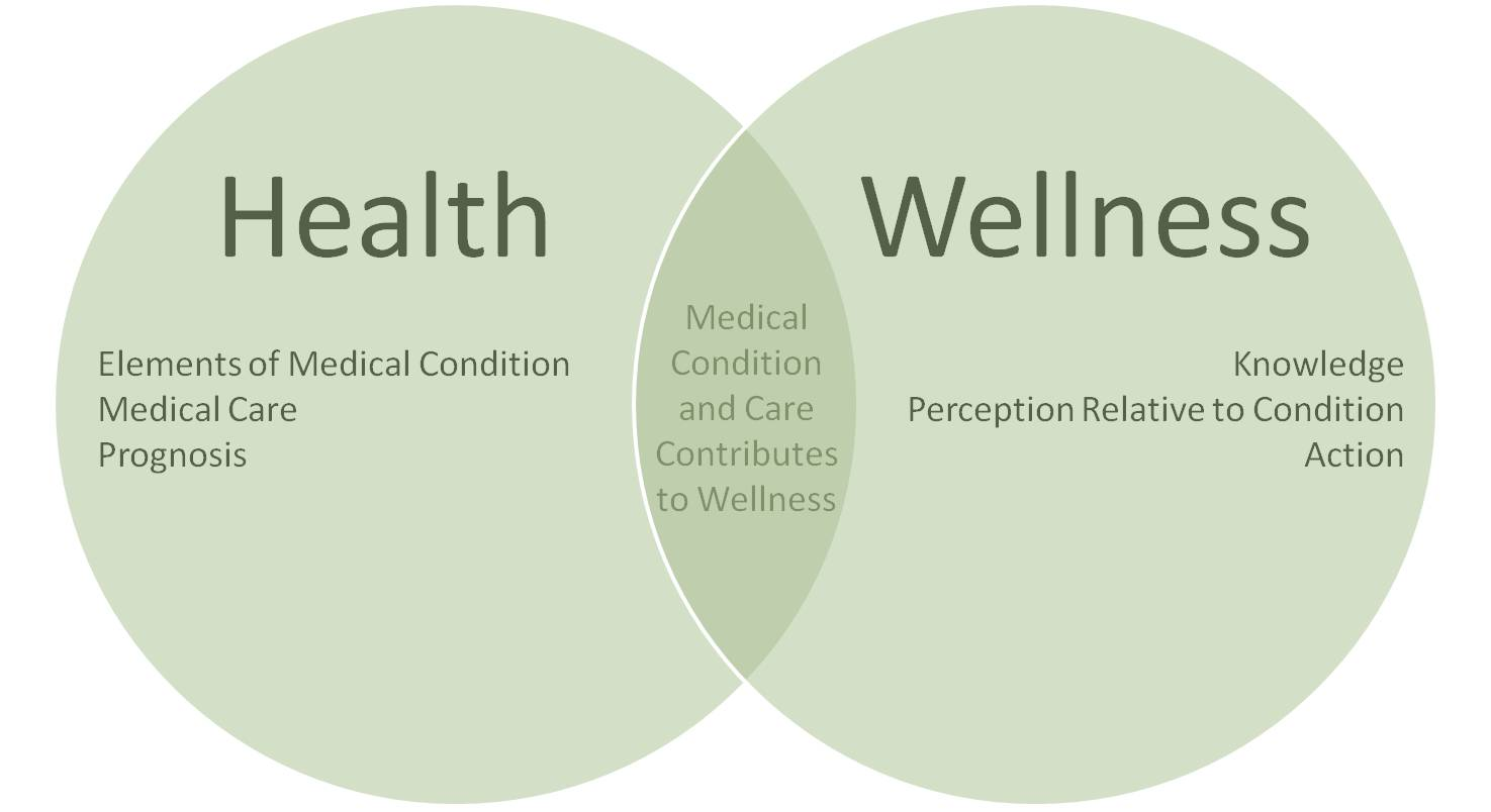 Difference Between Health And Wellness Ccc Blog